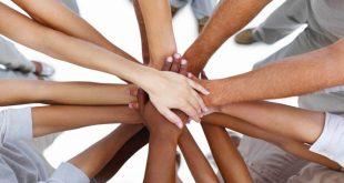 تصویر همکاری در کارگروه اجرائی شرکت نگرش اندیشمندان پیشرو